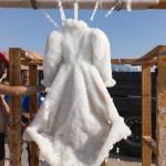 Gaun Misterius ini Muncul dari Laut Mati