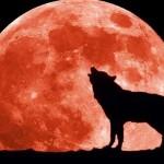 Supermoon 'Serigala': Supermoon Terbesar Tahun Ini yang Akan Muncul di Awal Tahun 2018